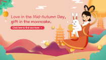 Love in the Mid-Autumn Day, gift in the mooncake